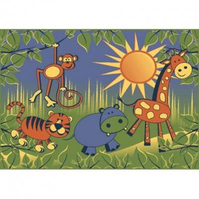 Safari - różne rozmiary